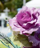 que flores regalar para un funeral o un entierro coronavirus muerte